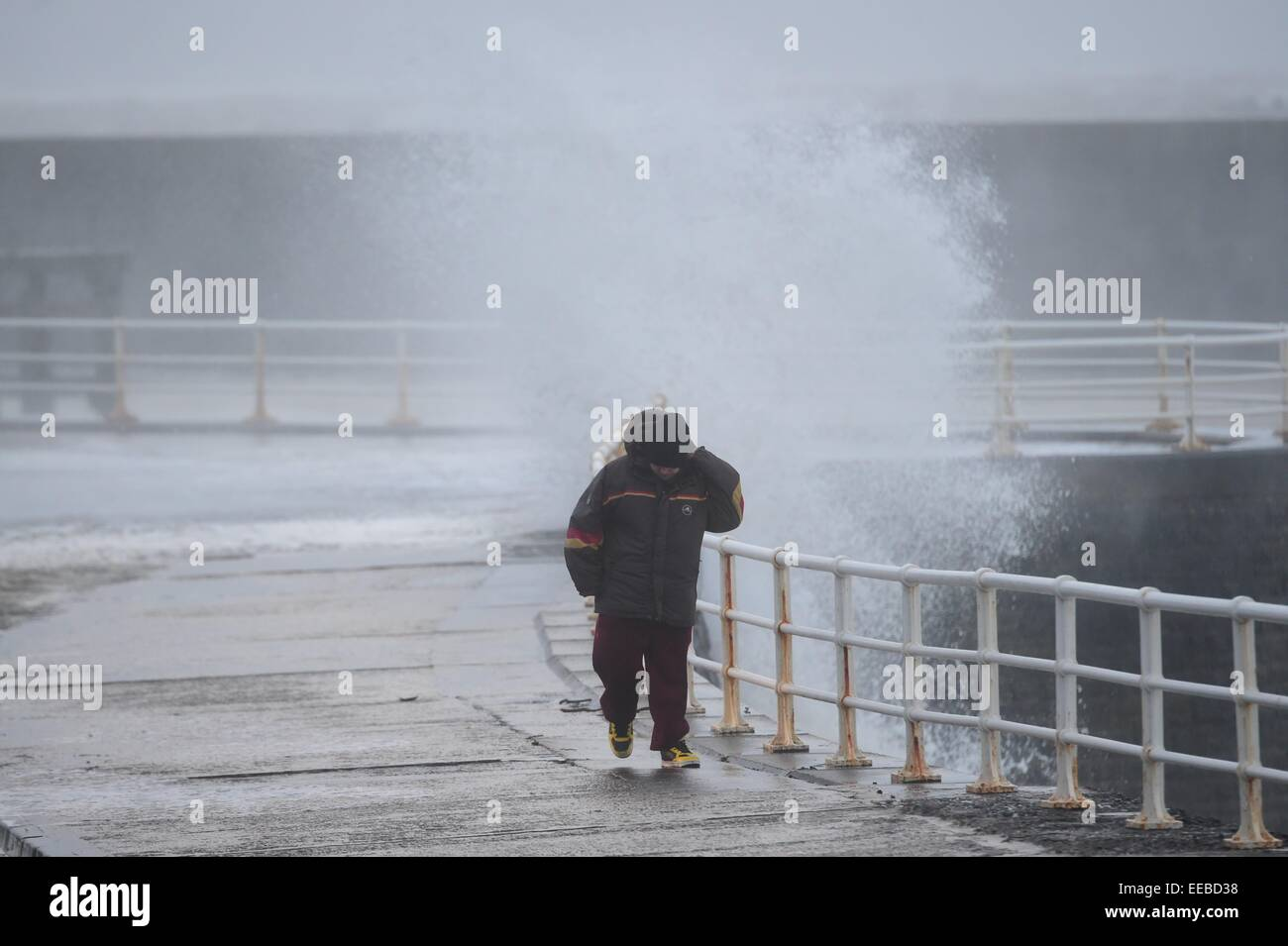 Aberystwyth, Wales, UK. 15th January, 2015. UK Weather: A man struggles to walk against the force of the wind as - Stock Image