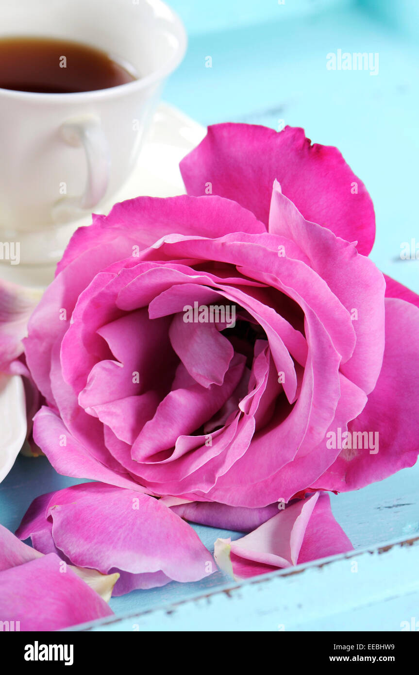 Beautiful Pink Rose With Cup Of Tea On Pale Blue Shabby Chic Table
