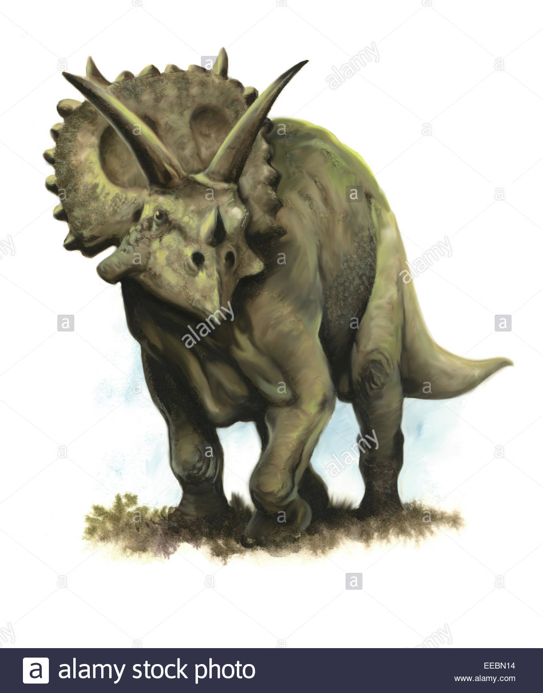 Arrhinoceratops dinosaur from the Late Cretaceous period of Alberta, Canada. Stock Photo