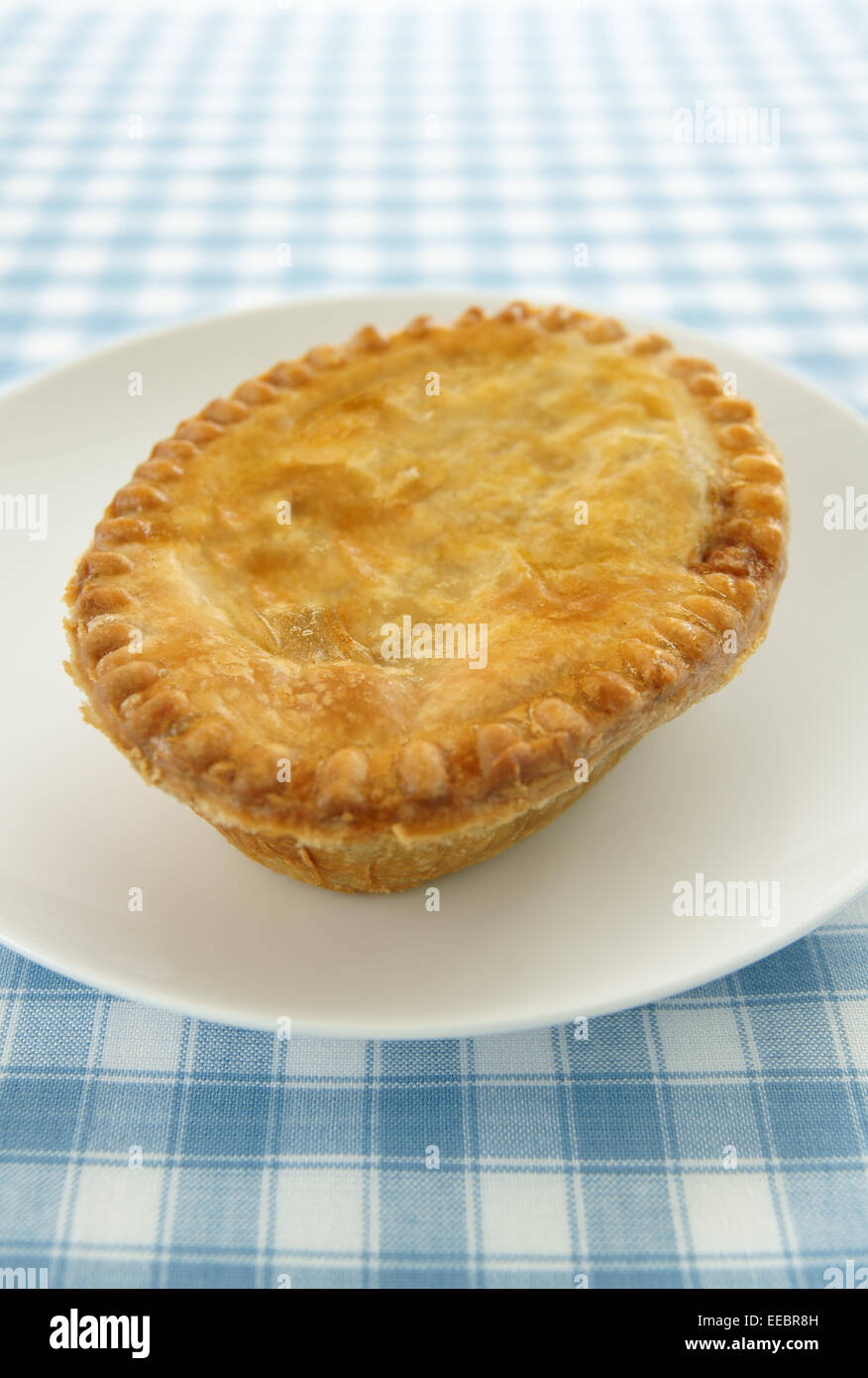 A pie with a golden crust on a white plate and blue check table cloth - Stock Image