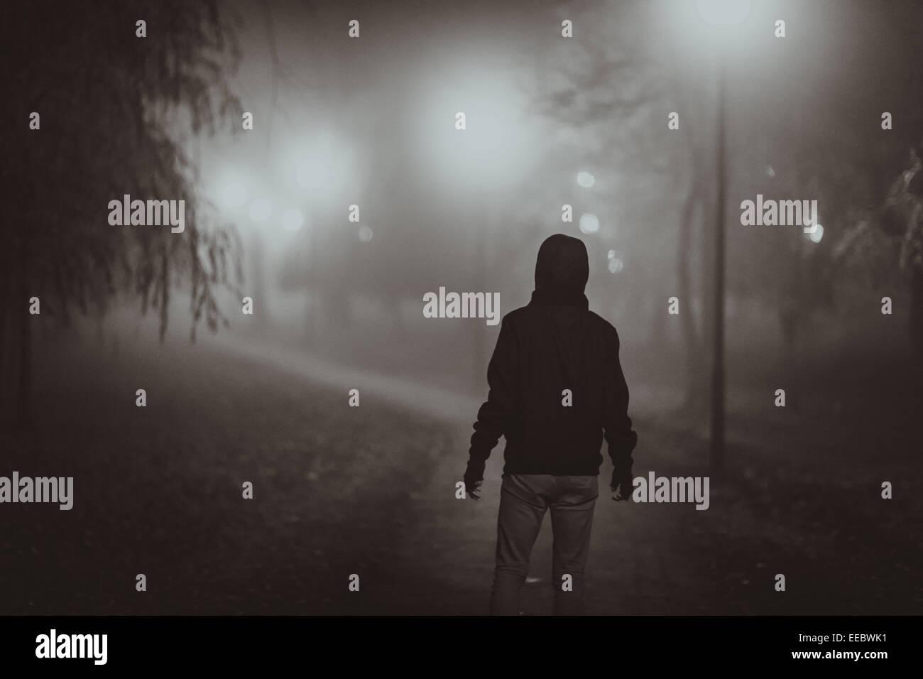 Horror scene of a autumn fog. LIGHTING FILM NOIR STYLE & Horror scene of a autumn fog. LIGHTING FILM NOIR STYLE Stock Photo ...