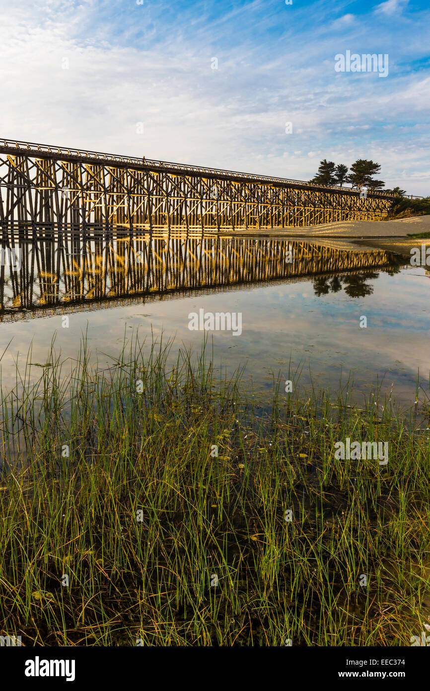 The Pudding Creek Trestle, now part of the Ten Mile Beach Trail along the Pacific Ocean near Fort Bragg, California, - Stock Image