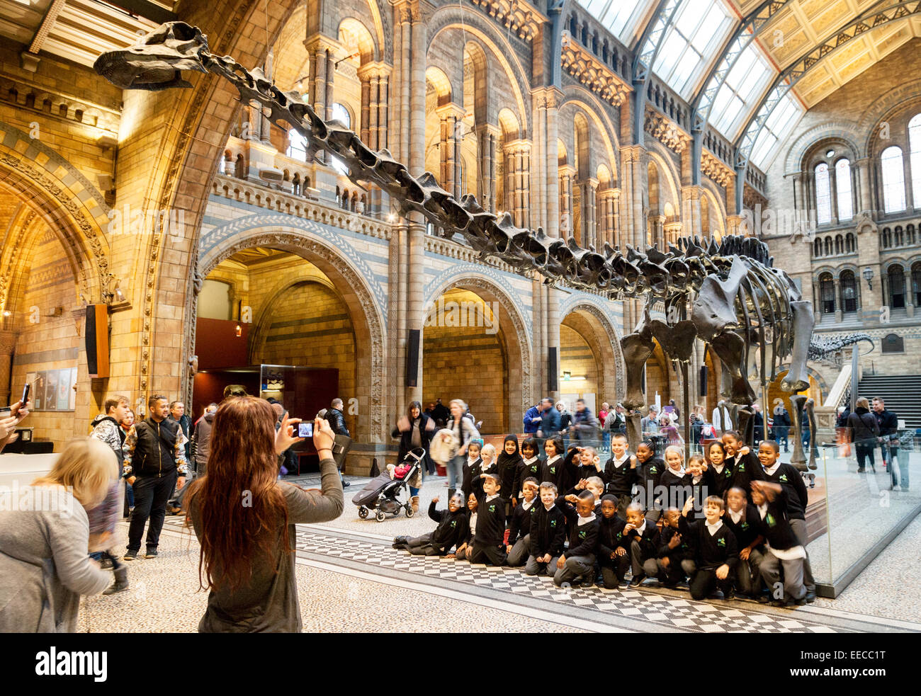 Children on a school trip at the Natural History Museum, London England UK - Stock Image