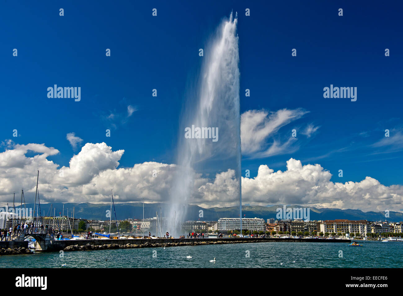 The giant fountain Jet d'eau in the Rade port area, Geneva, Switzerland - Stock Image