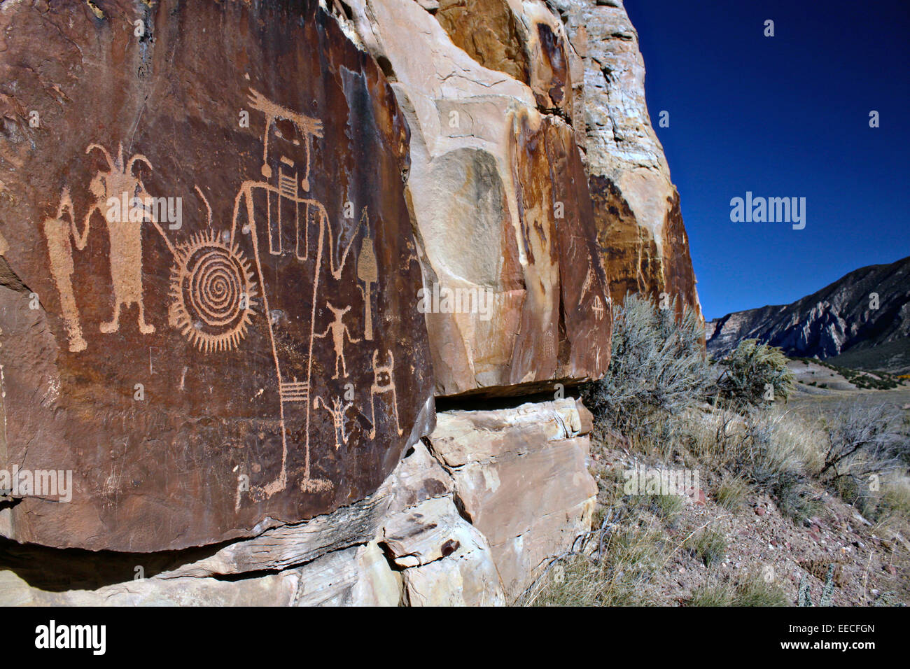 A large panel of ancient petroglyphs on a rock face at McKee Springs off the Rainbow Park Road in Dinosaur National - Stock Image