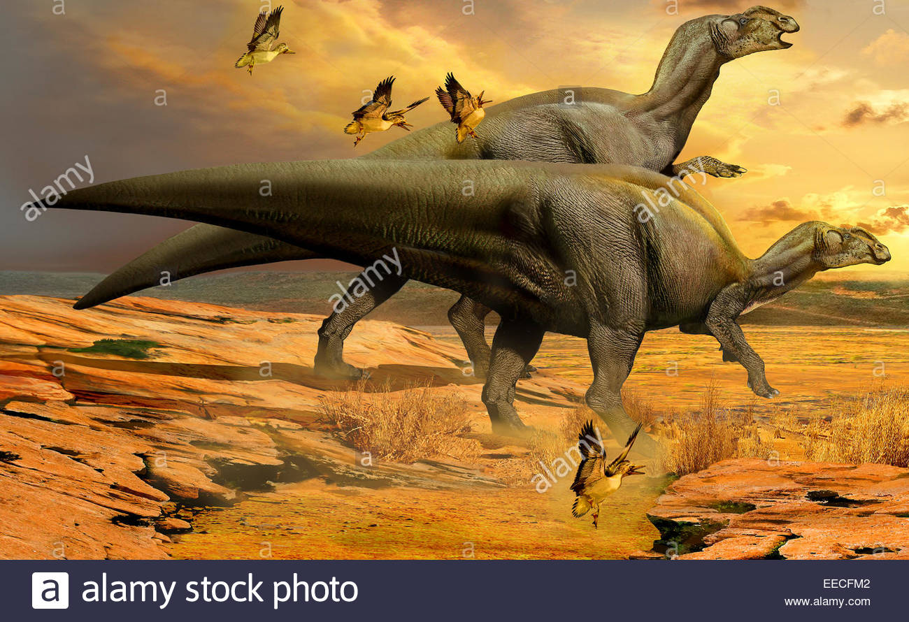 A pair of Willinakaqe hadrosaurid dinosaurs from the Late Cretaceous period of Argentina. - Stock Image