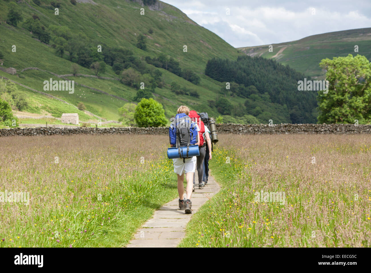 Young male backpackers on the Pennine Way near Muker, Yorkshire Dales National Park, North Yorkshire, England, UK - Stock Image