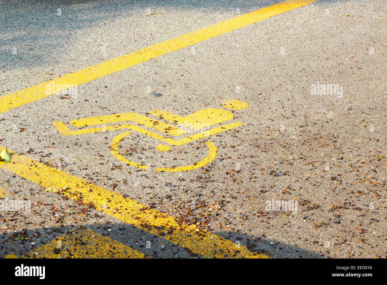 Particular of reserved parking for disabled person - Stock Image