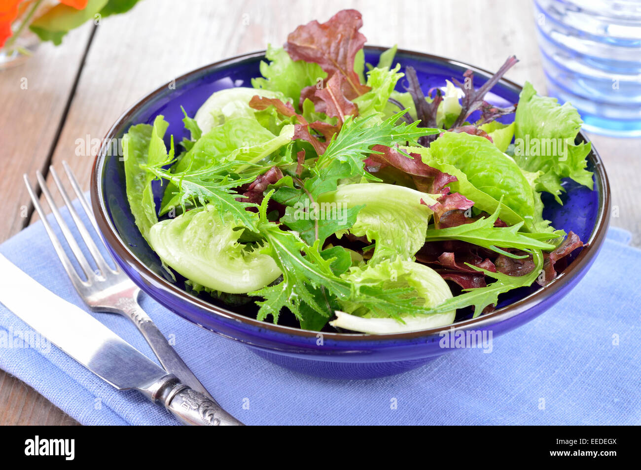 Fresh light mixed green leaves salad. Lettuce, mizuna, arugula and oakleave lettuce in blue bowl on a table. Stock Photo