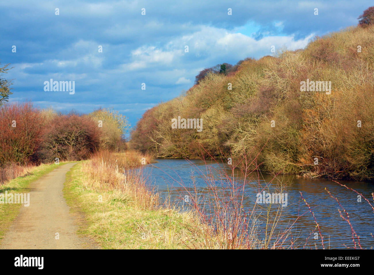 Forth & Clyde Canal, Kilsyth, North Lanarkshire, Scotland in April - Stock Image