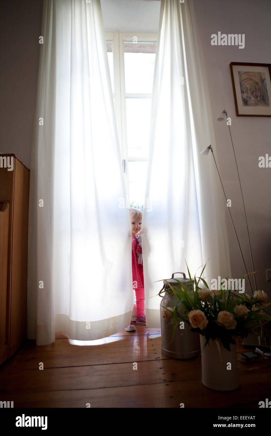 Young girl playing hide and seek behind white, opaque curtains in front of a large window in a house.lifestyle - Stock Image