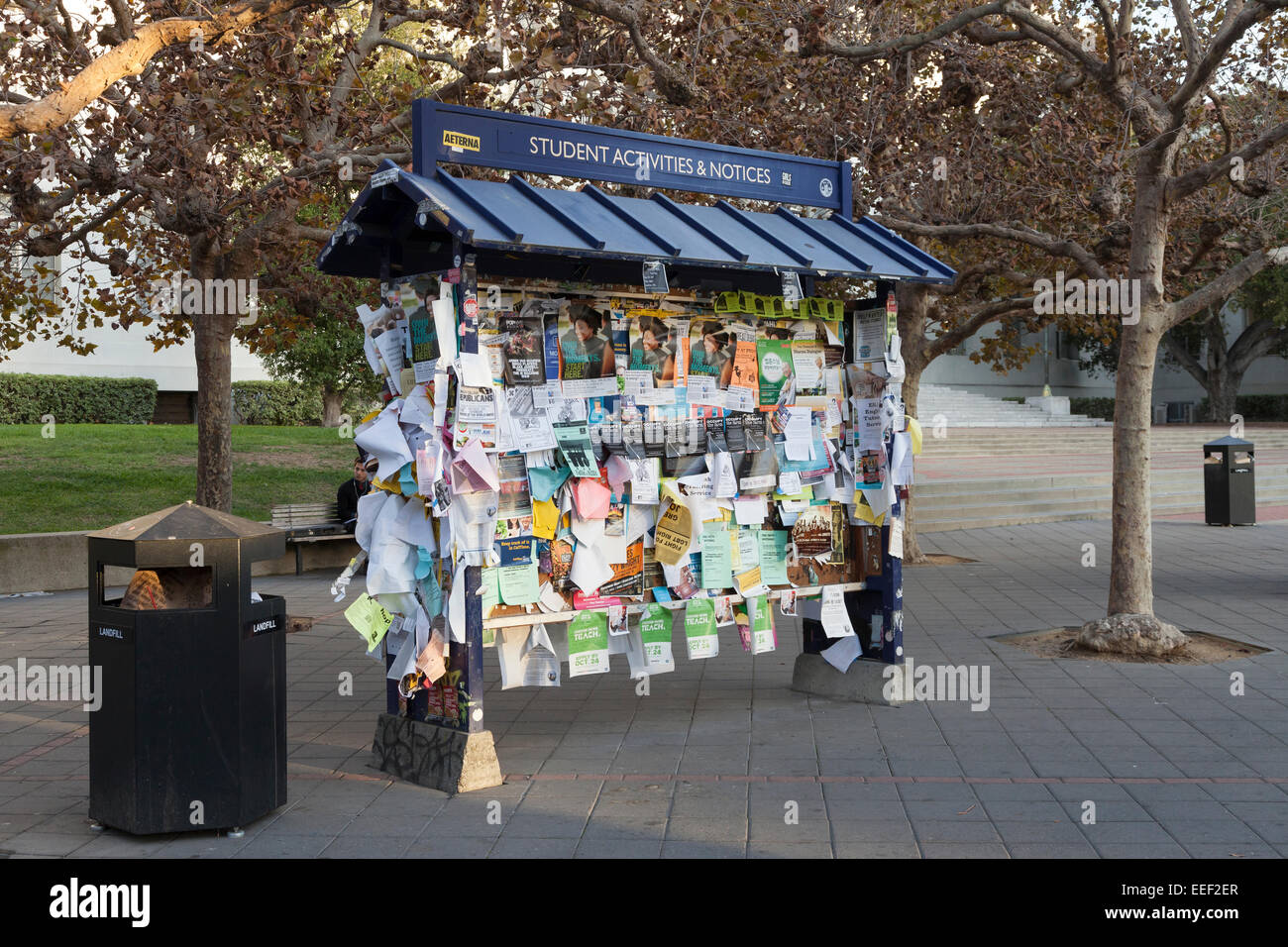 Student Activities & Notices board at the University of California Berkeley - Alameda County, California, USA - Stock Image