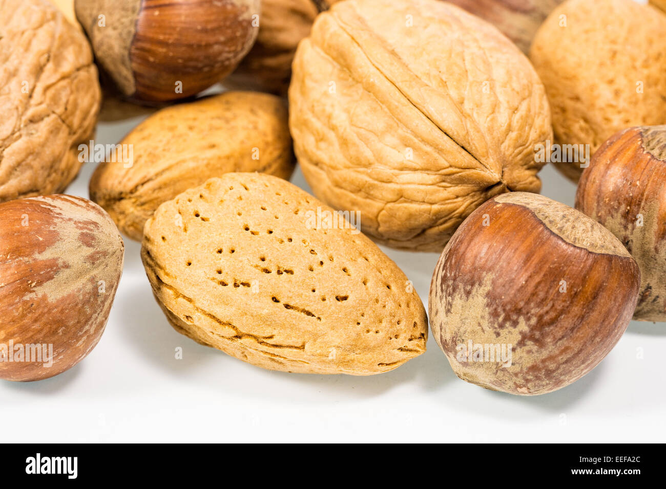 Nuts with white background - Stock Image