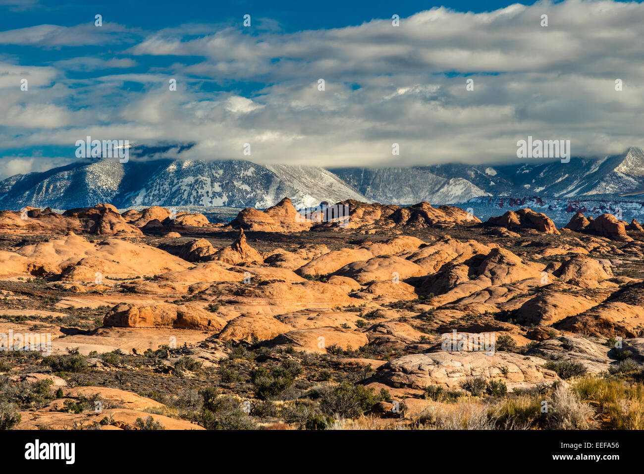 Winter view over the Petrified Dunes with snowy, Arches National Park, Utah, USA - Stock Image