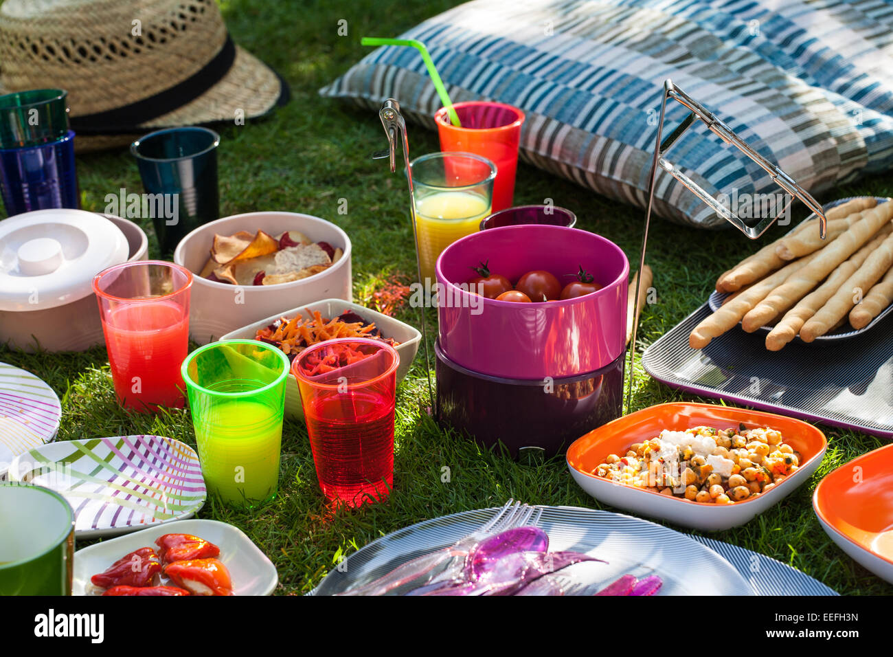 Outdoor picnic with plastic Habitat plates and cups - Stock Image