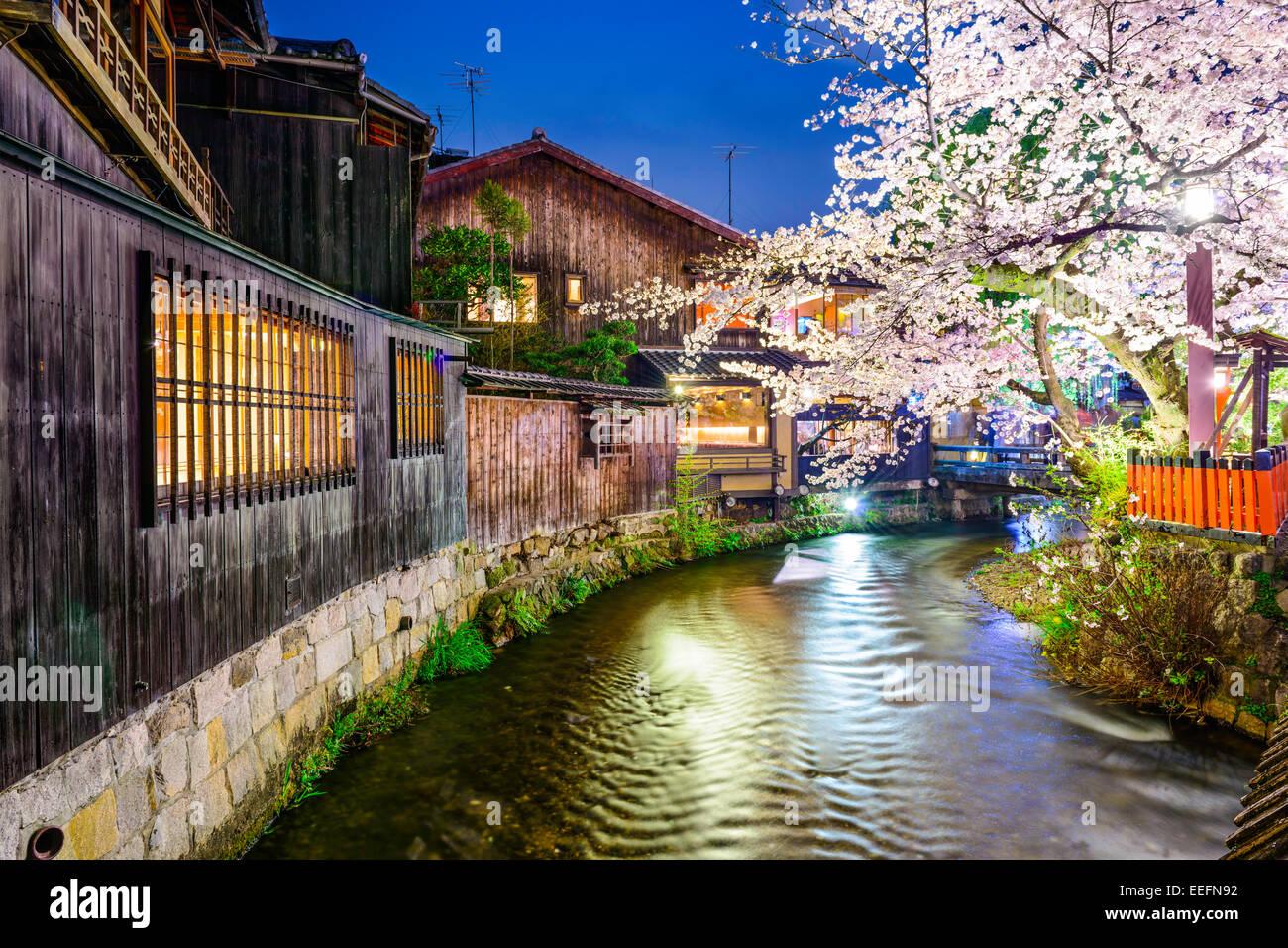 Kyoto, Japan at Shirakawa canal in Gion district. - Stock Image