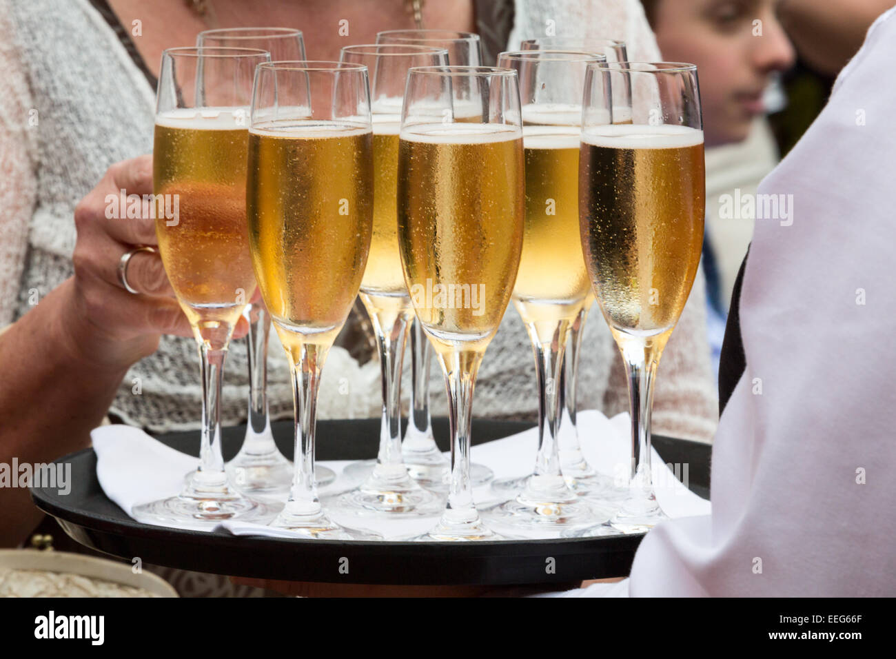 Glasses of champagne served on tray - Stock Image