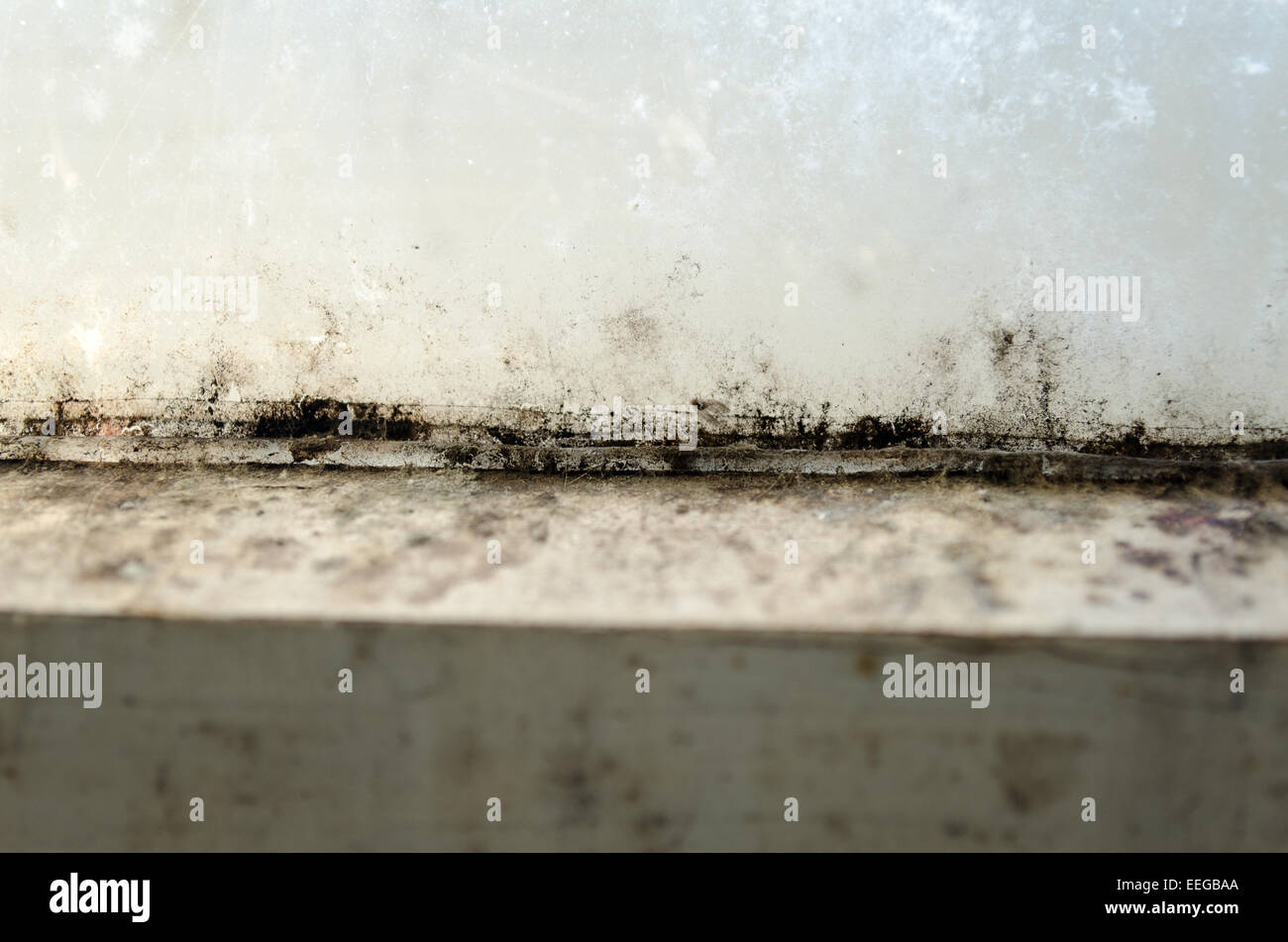 Grungy dirty old window closeup mold view Stock Photo