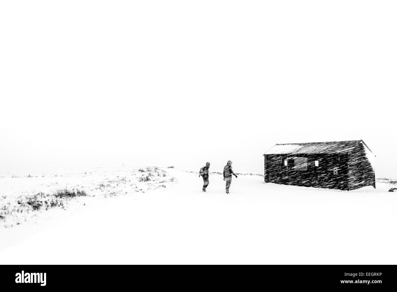 Walkers in a snow storm on a winter ramble, Yorkshire countryside , UK - Stock Image
