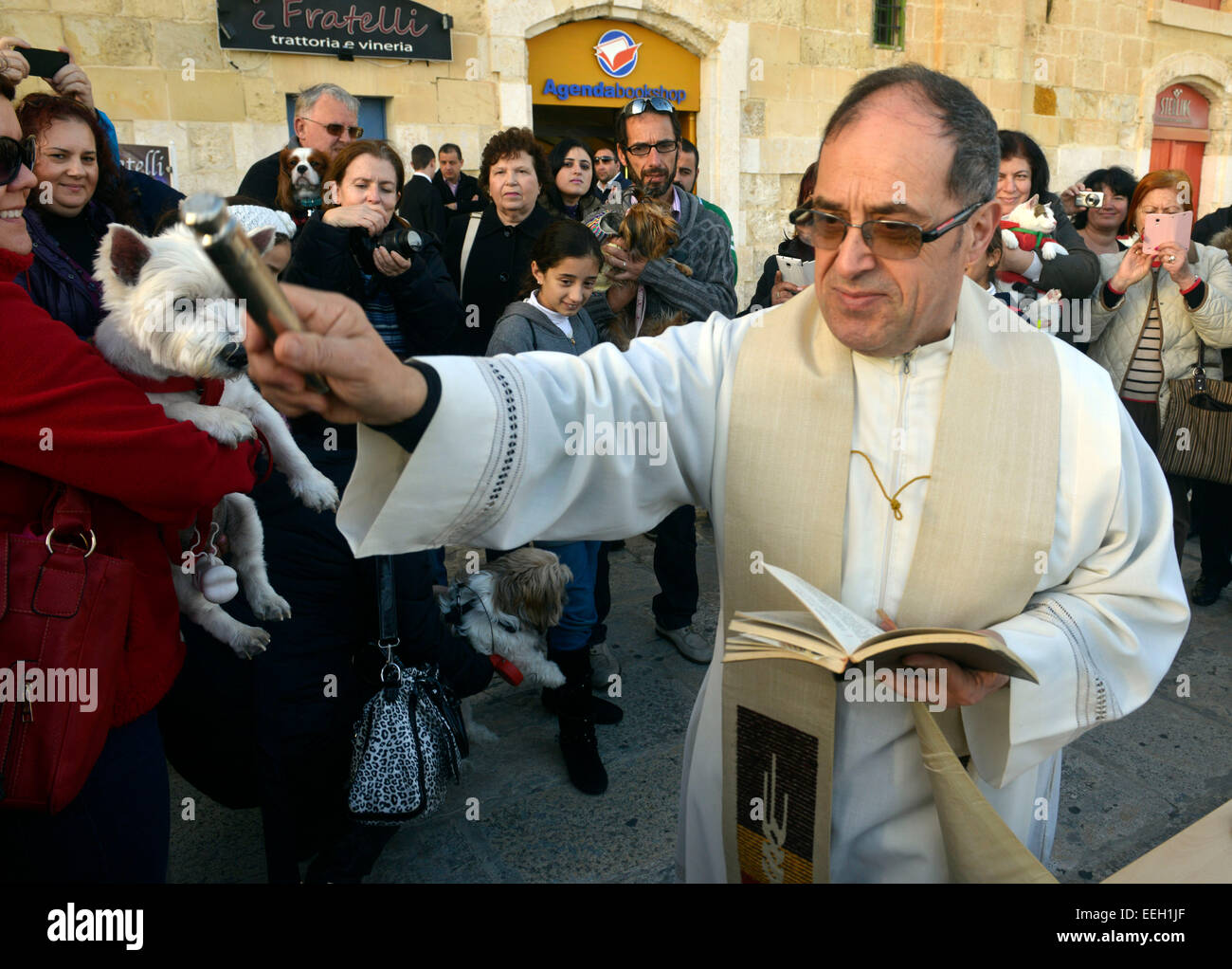 Valletta, Malta. 18th Jan, 2015. A blessing of the animals ceremony outside the Grand Master Pinto Chapel on the - Stock Image