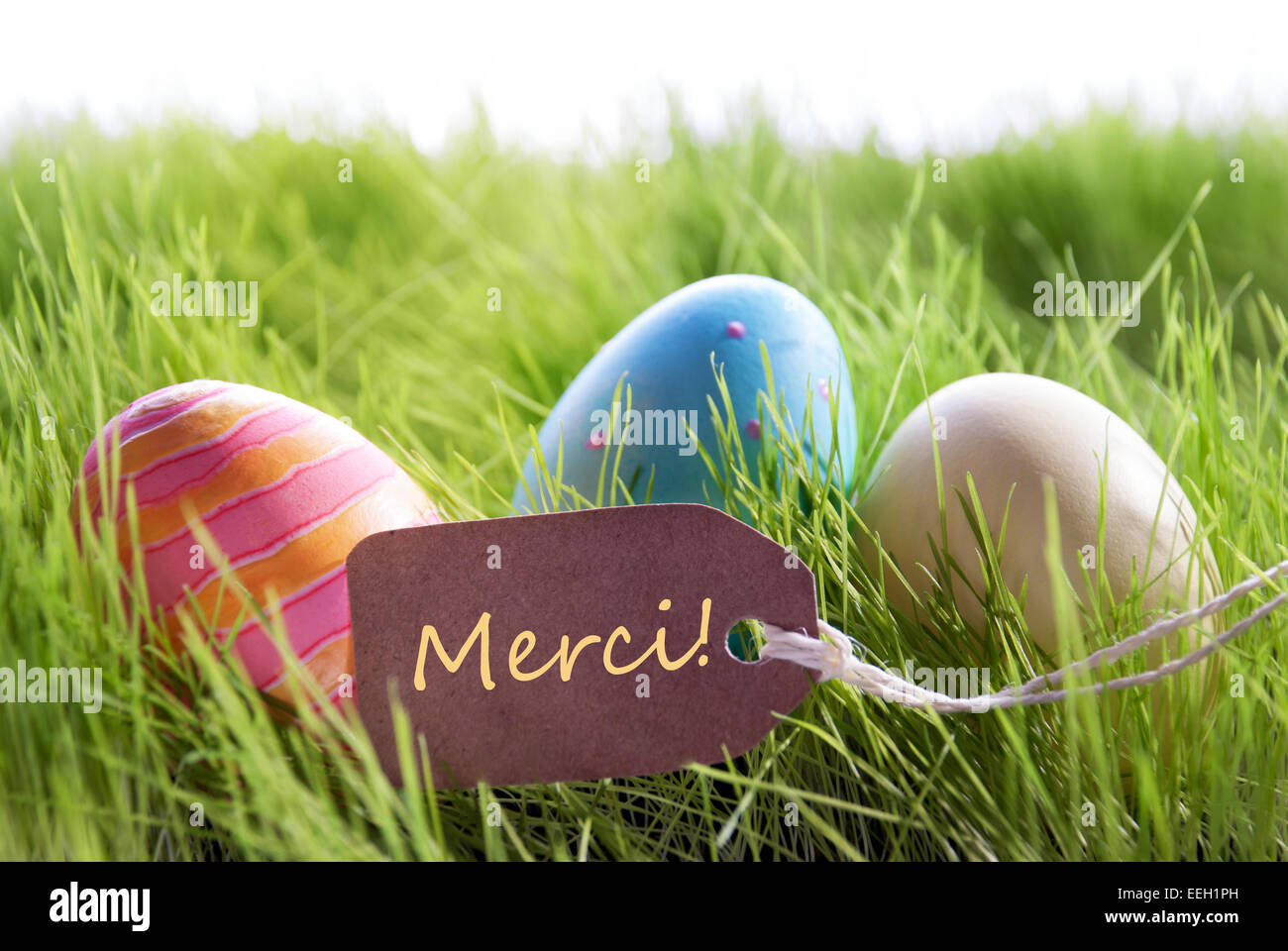 Colorful easter background with three easter eggs and label with colorful easter background with three easter eggs and label with french text merci on green grass for happy easter seasons greet m4hsunfo