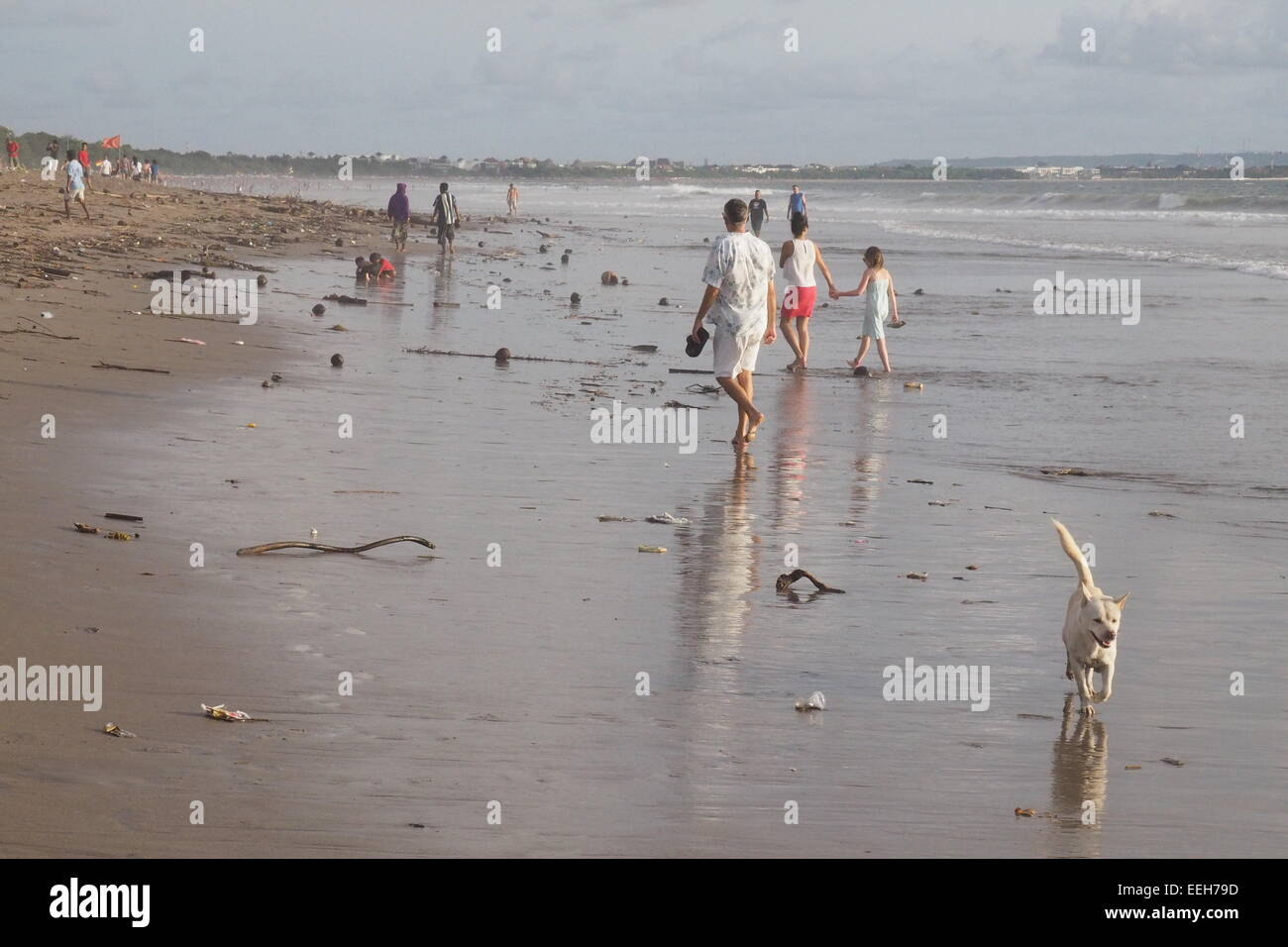 A white dog and tourists walking along a beach with litter. - Stock Image