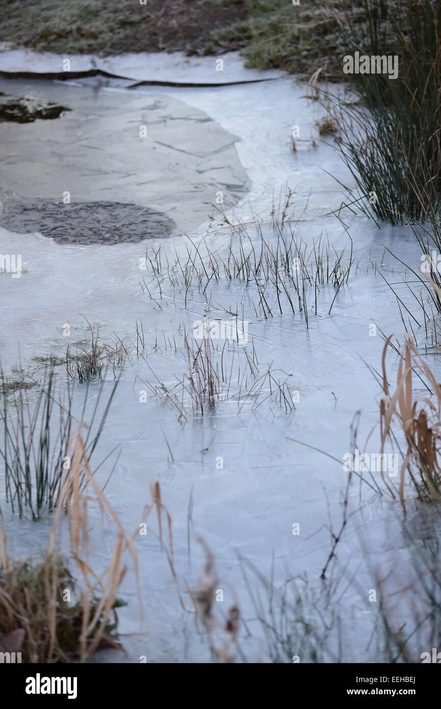 Aberystwyth Wales UK, Monday 19 January 2015 UK Weather: Ice on the pools of water by  the River Rheidol as it flows - Stock Image