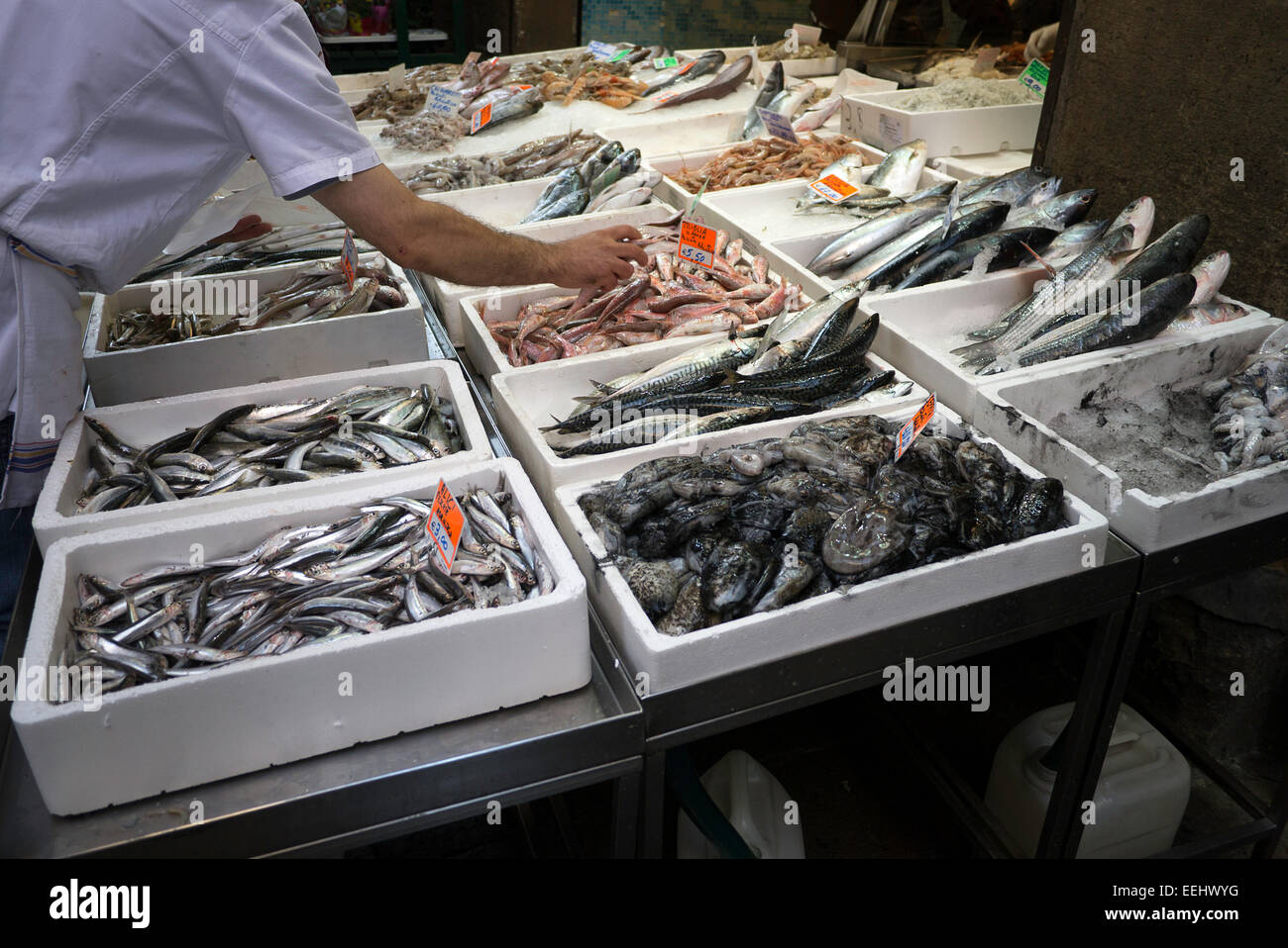 Fresh fish, including anchovies, on ice in boxes at a fish stall on Via Pescherie Vecchie, in Bologna, Italy. - Stock Image