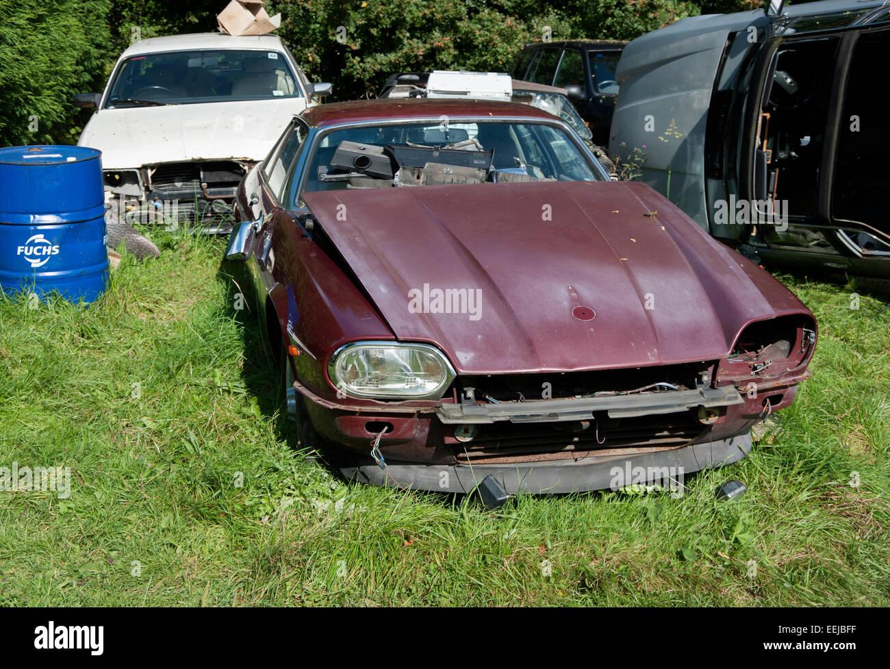Scrap Jaguar Cars Resting In A Breakers Yard Stock Photo 77850851