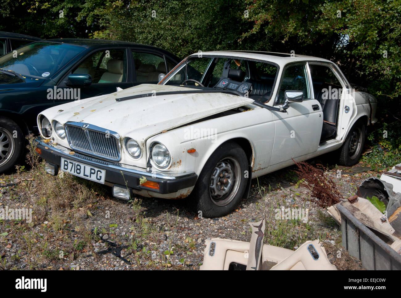 Scrap Jaguar Cars Resting In A Breakers Yard Stock Photo 77851225