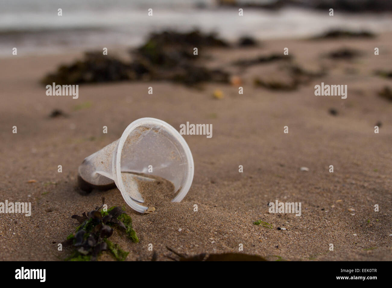 A discarded plastic cup on a beach at Porthcawl, South Wales. - Stock Image
