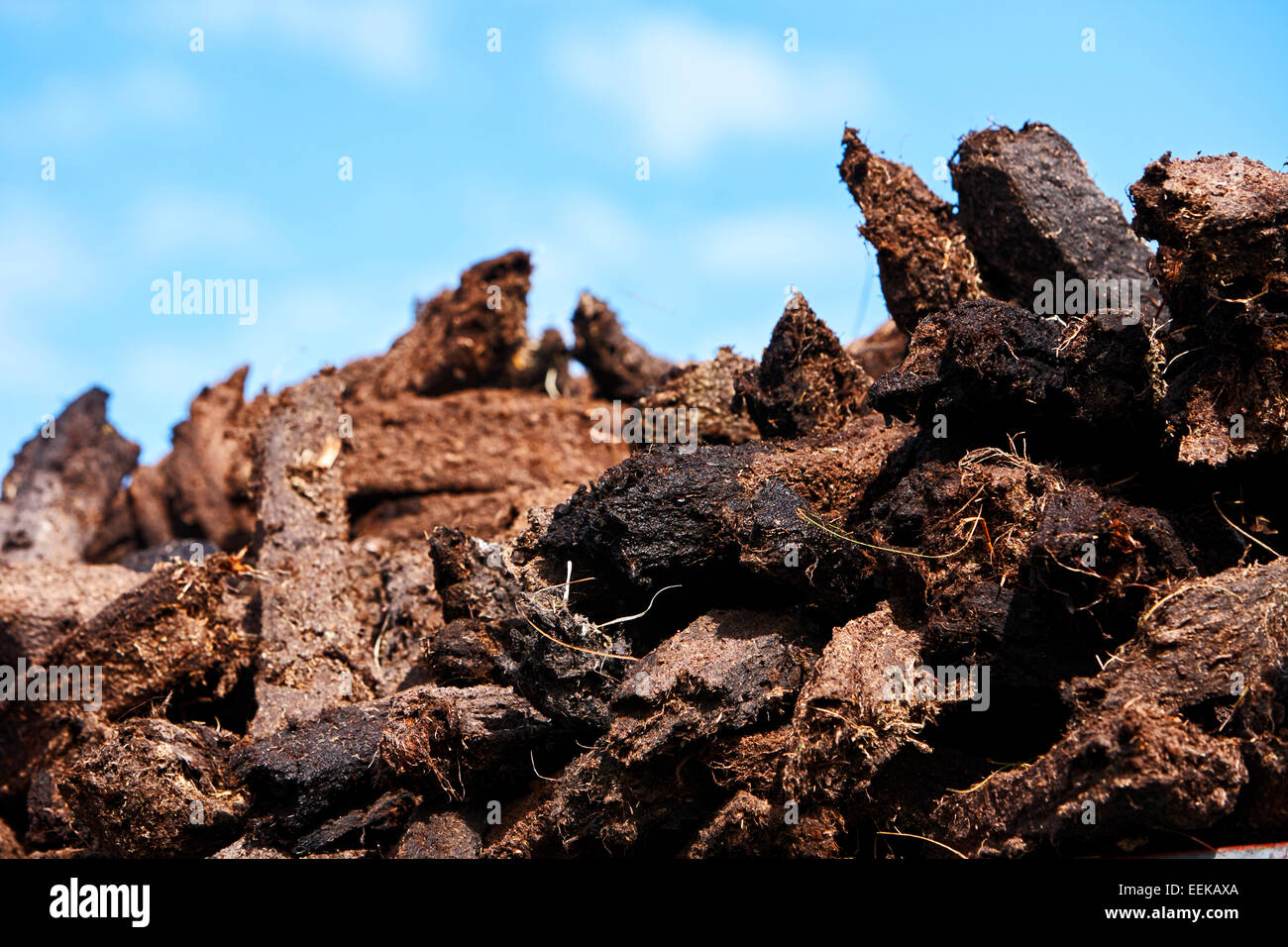 pile of irish peat turf fuel collected for home usage - Stock Image
