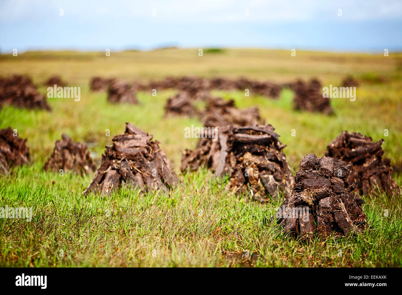 piles of irish peat turf fuel drying in the landscape - Stock Image