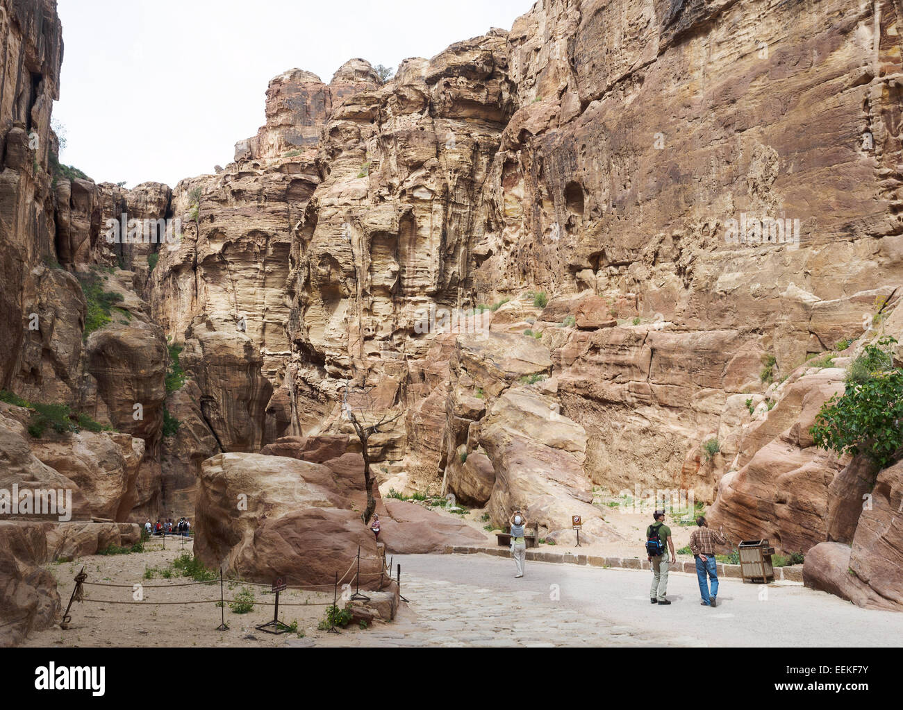 View along the Siq on the way to Petra, Jordan Stock Photo