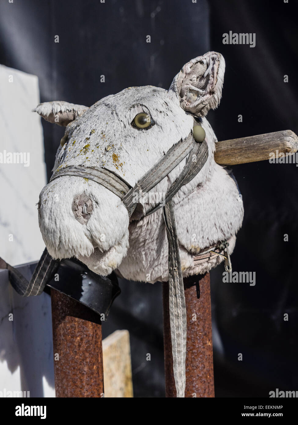 A fake horse head made from what appears to be old white mop material is sitting on a rusted pole. - Stock Image