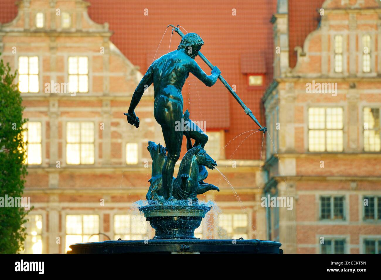 Gdansk Poland. The Old Town. The Neptune Fountain, erected 1633, with the ornate façade of the Green Gate behind - Stock Image