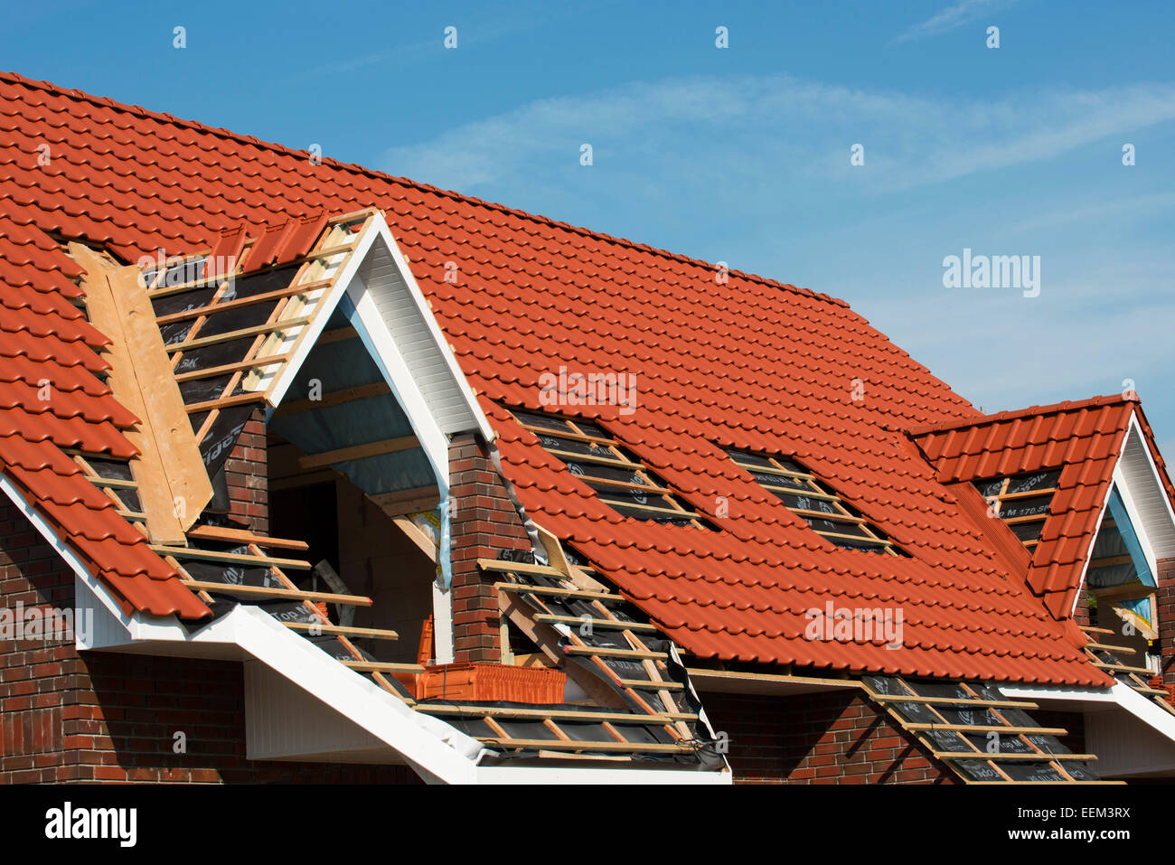 Completion of the roof truss of a newly built house, Aurich, Lower Saxony, Germany - Stock Image