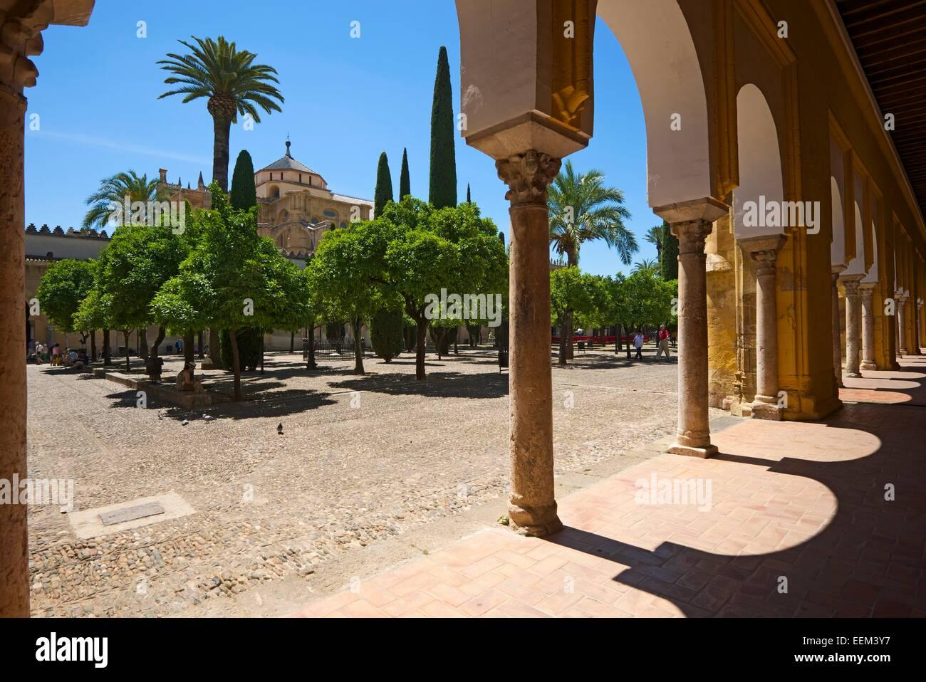 Courtyard and cloisters of the Mezquita de Cordoba, Cordoba, Andalucía, Spain Stock Photo