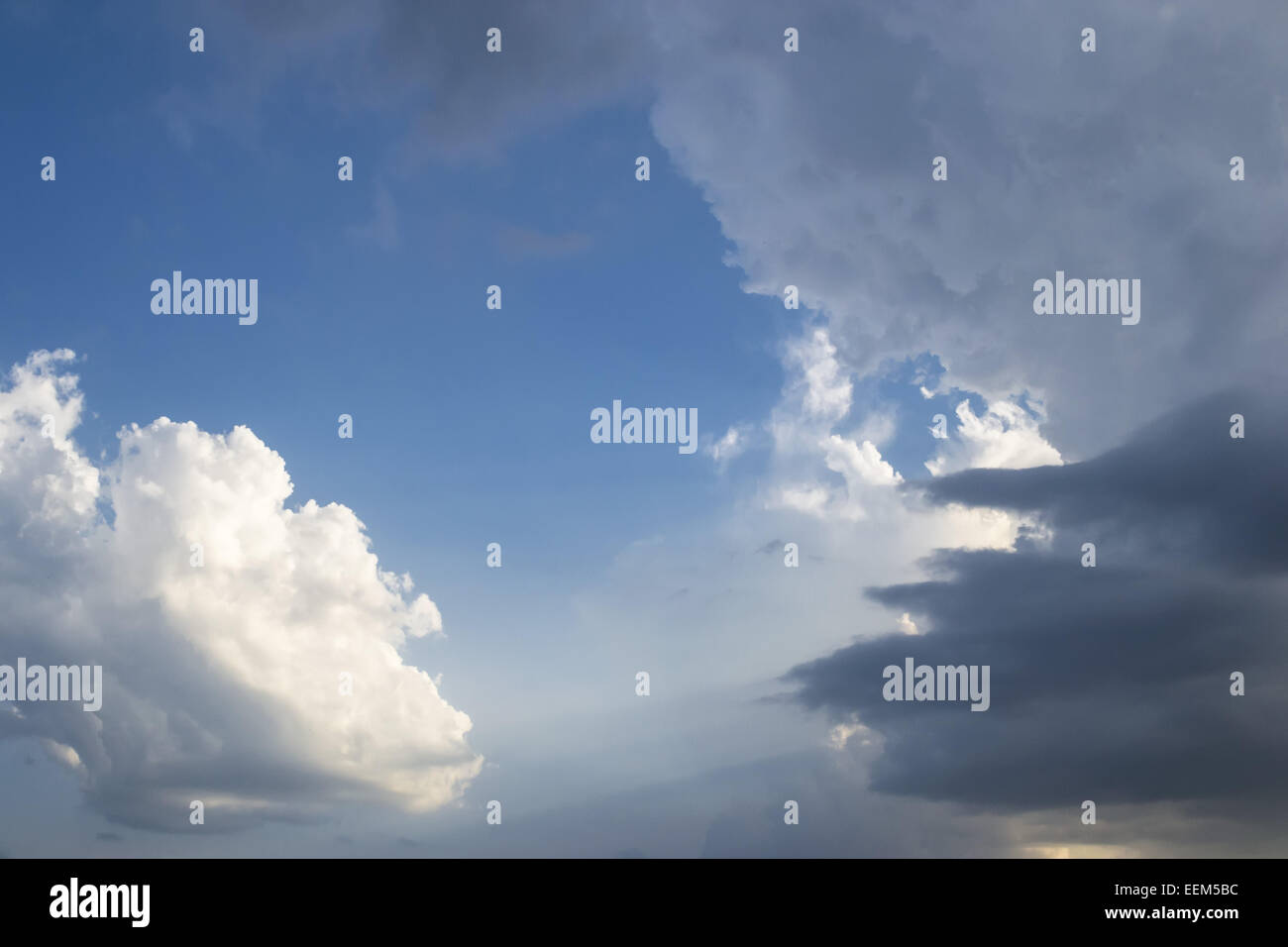 Typical storm clouds gathering fast and forecasting rain and thunderstorm in hot summer season - Stock Image