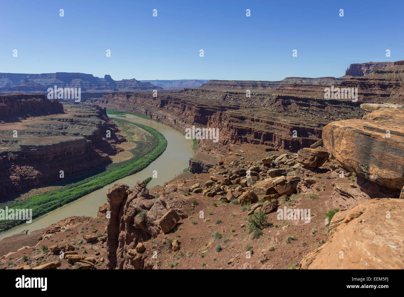 Gooseneck Overlook and the Colorado River, Island in the Sky, Canyonlands National Park, Moab, Utah, United States Stock Photo
