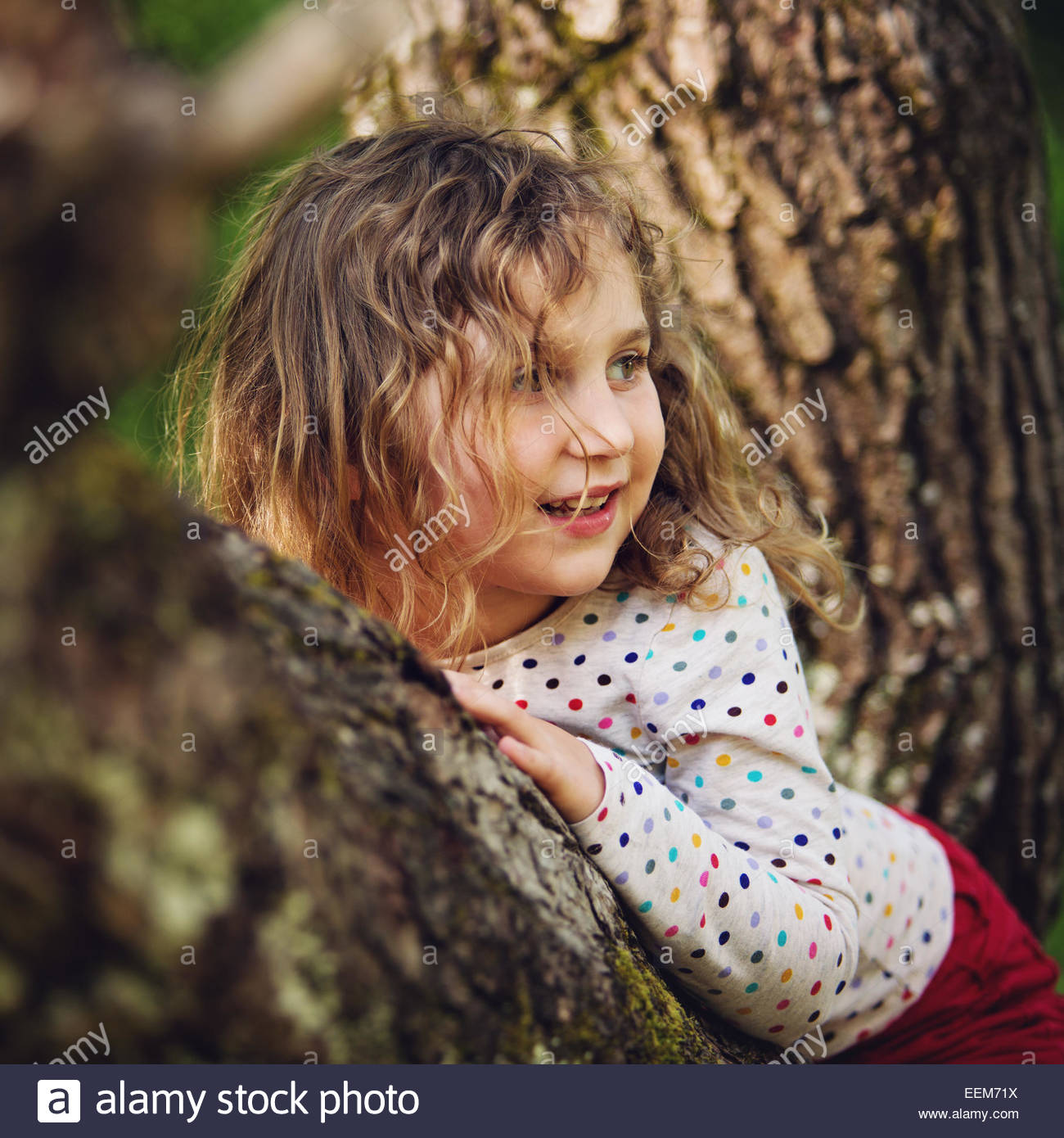 Young girl sitting (4-5) in tree - Stock Image
