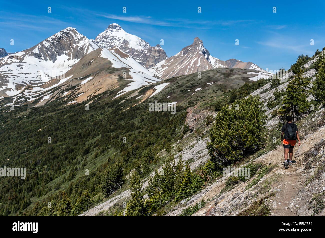 Canada, Alberta, Banff National Park, Canadian Rockies, Hiker walking along mountain - Stock Image