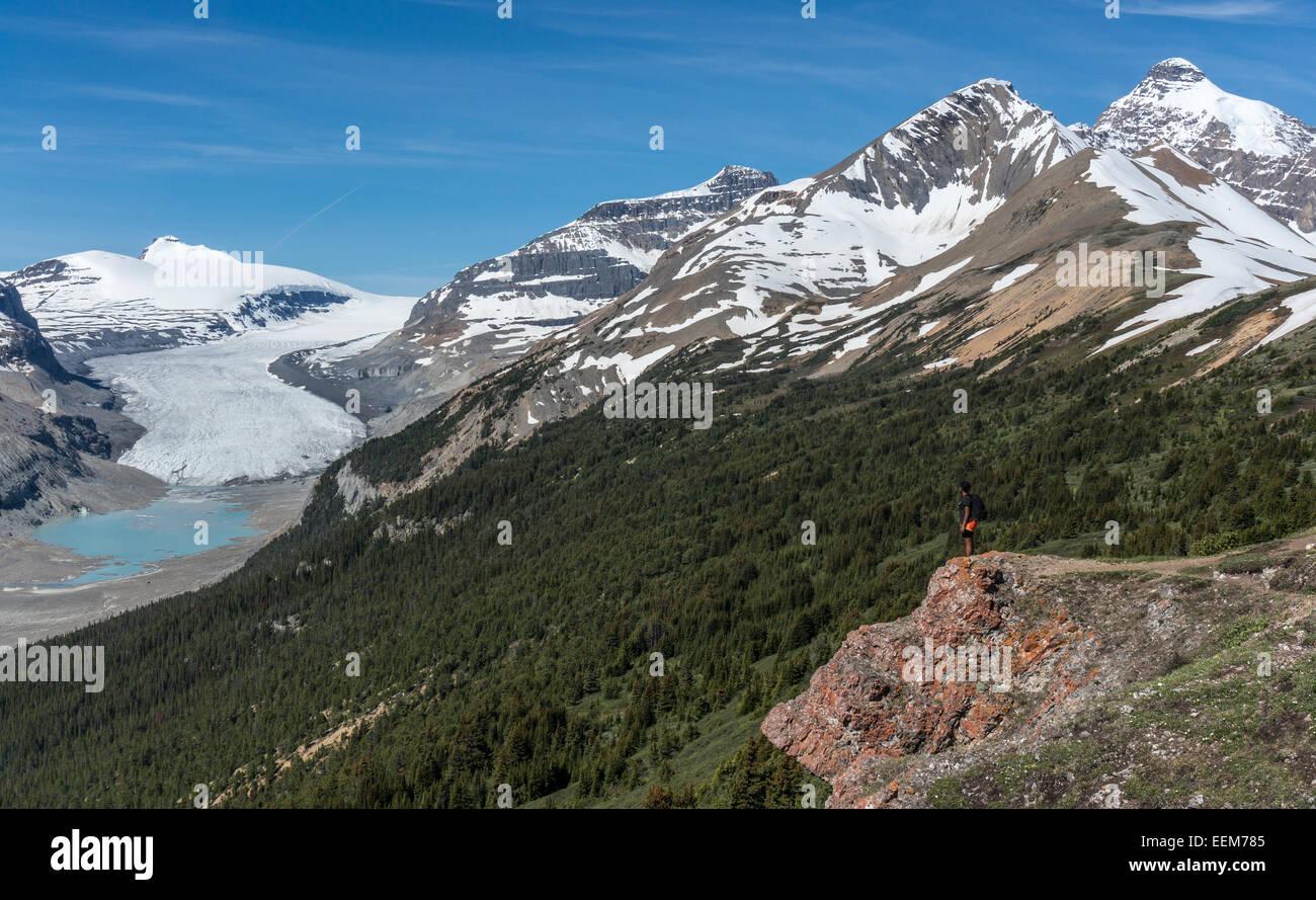 Canada, Alberta, Banff National Park, Saskatchewan Glacier and Valley, Canadian Rockies, Hiker looking at view from - Stock Image