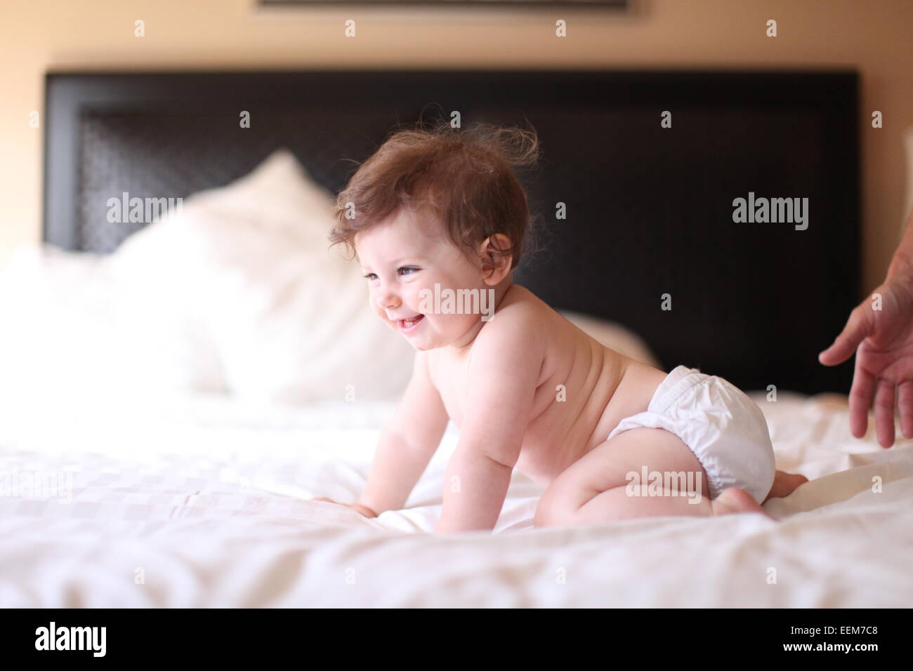 Baby girl crawling on bed - Stock Image