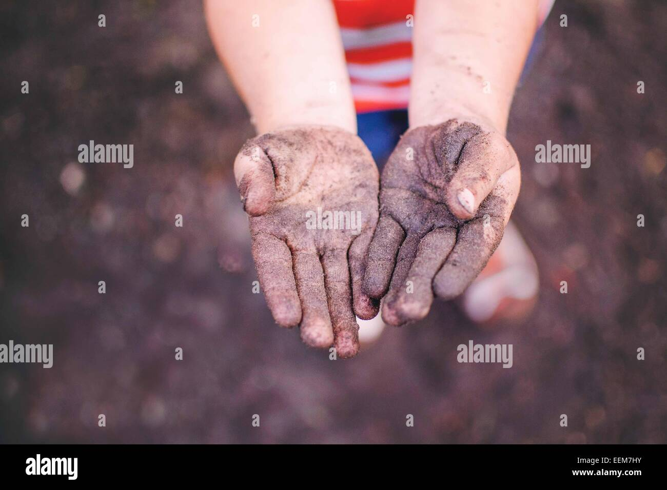 Young boy (2-3) showing dirty hands - Stock Image