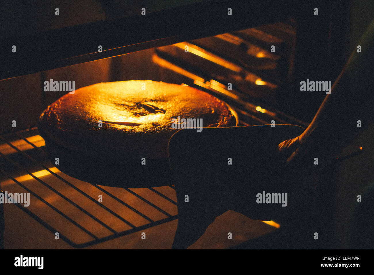 Woman baking cake in oven - Stock Image