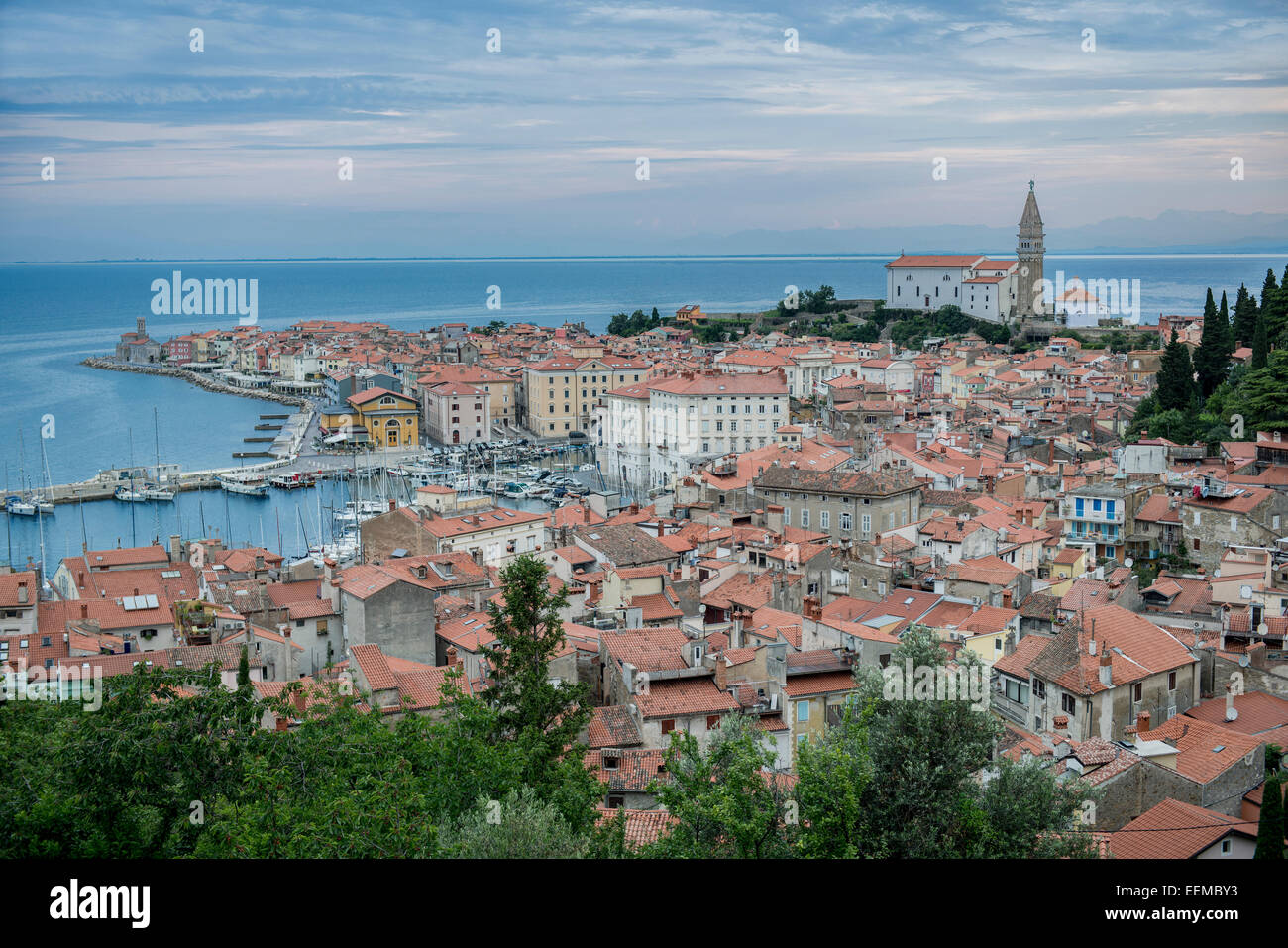 Aerial view of buildings in cityscape, Piran, Coastal-Karst, Slovenia - Stock Image