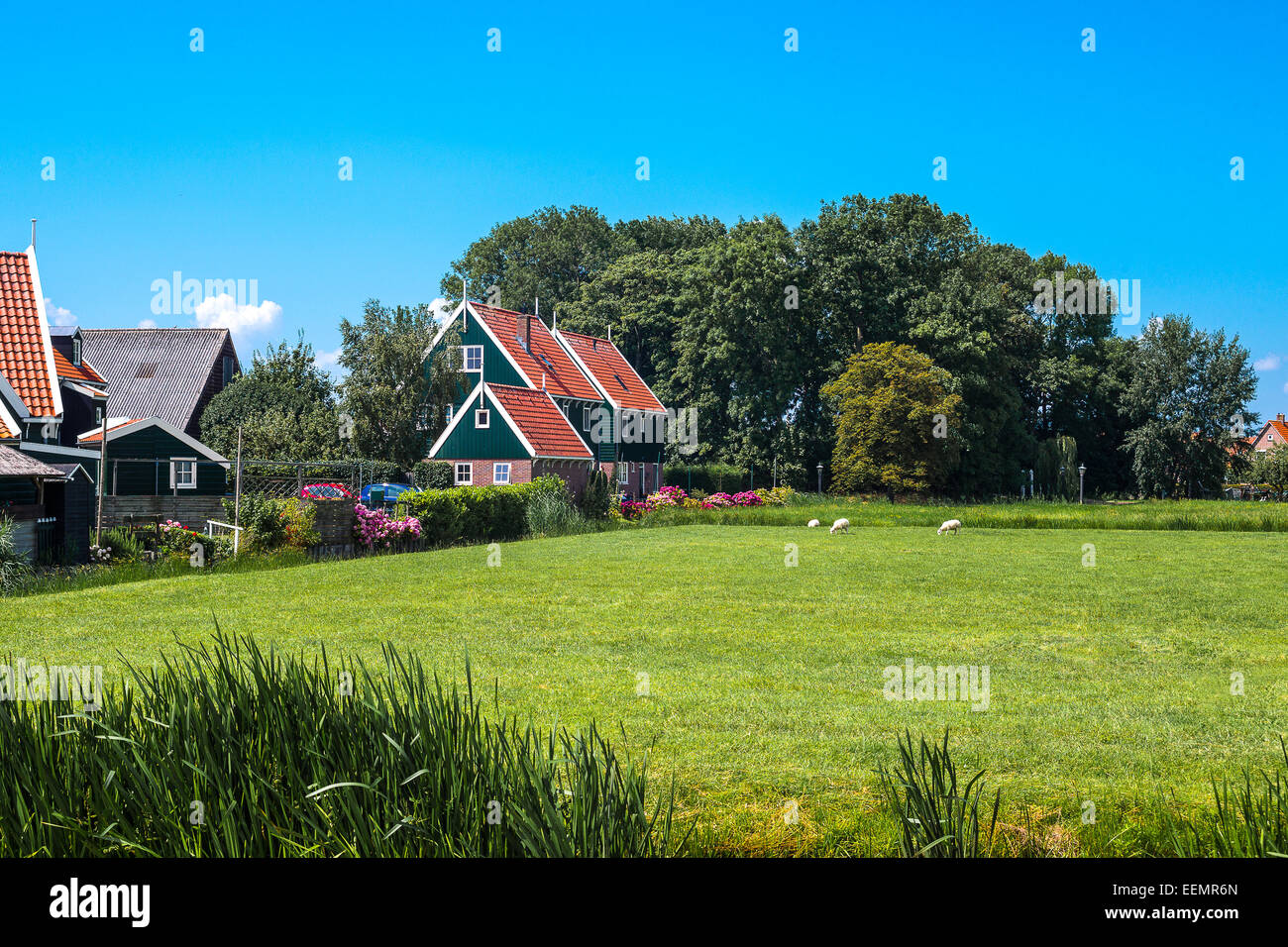 Amsterdam, Waterland district, Marken, typical country houses near the village. Stock Photo