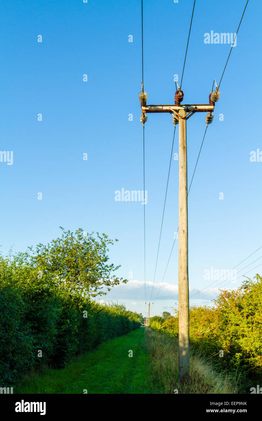 Electric Poles Power Lines : Wooden utility pole and electricity power lines in the