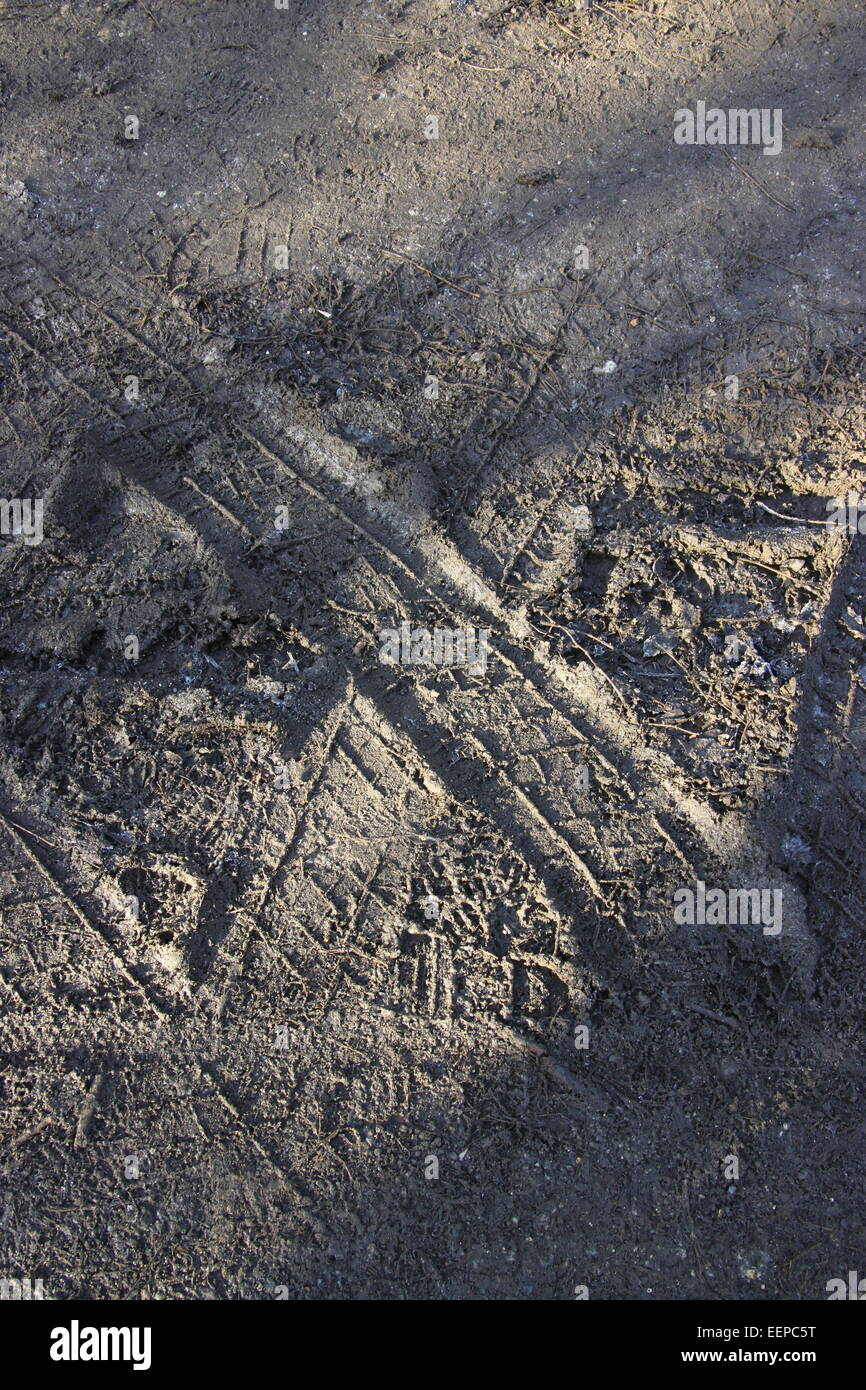 Tyre tracks in mud making a letter 'X' vertical - Stock Image